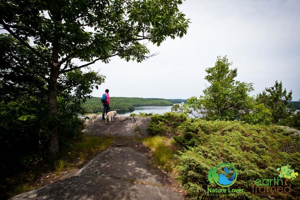 2015-July-09-9211 Restoule's Spectacular Fire Tower Trail