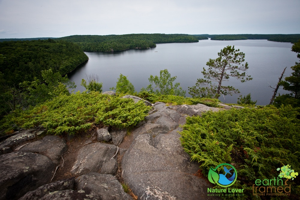 2015-July-09-9215 Restoule's Spectacular Fire Tower Trail