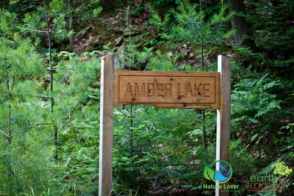 2015-July-09-9252 Restoule's Spectacular Fire Tower Trail