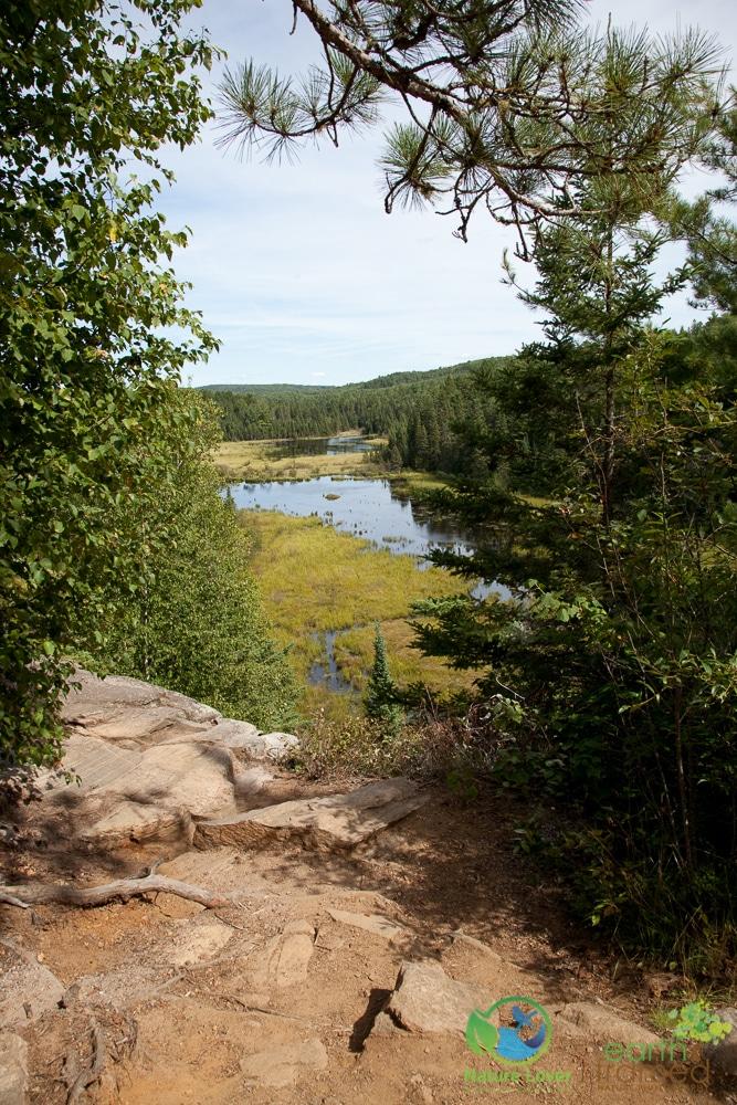 2009-August-27-1889 Algonquin's Beaver Pond Trail