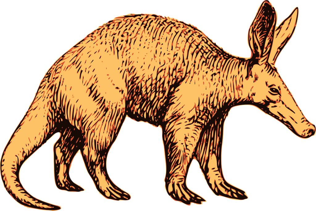 aardvark-2026983_1280-1024x683 Which Mammal Digs The Most Burrows?