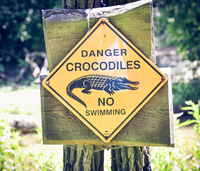 signs-2072240_640 What Is The Most Dangerous Crocodile In The World?