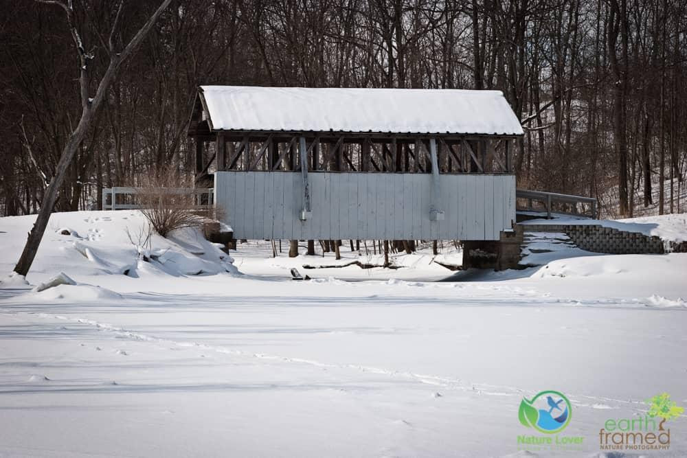 2008-Petrolia-Winter-Bridgeview-Conservation-Area-009-Tricia-McLellans-Mac-Pro Winter Shapes and Shadows at Petrolia's Bridgeview Conservation Area