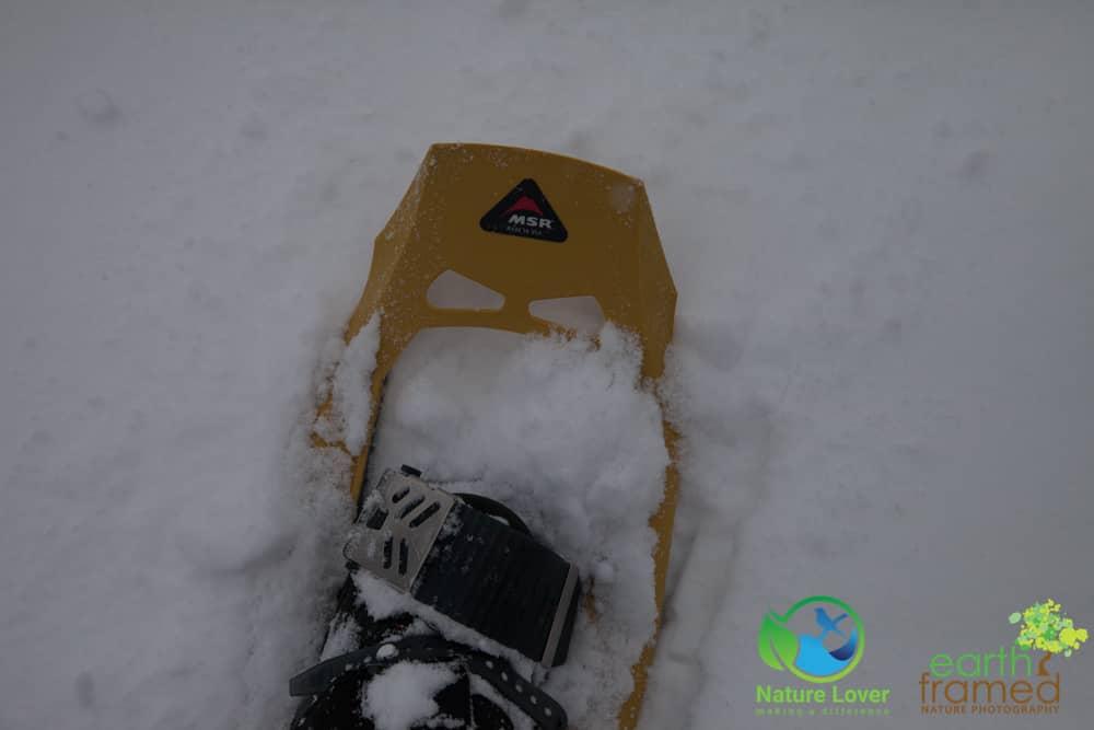 2015-February-21-6787 Snowshoeing Through Mandaumin Woods