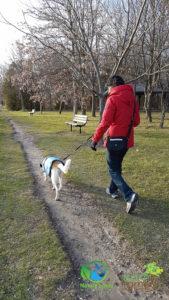 Nature-Lover-Canine-Explorer-Chloe-Hound-Mix_2_Nov-26-3-169x300 Chloe The Canine Explorer Joins the Naturelover Family!
